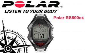 polar rs800